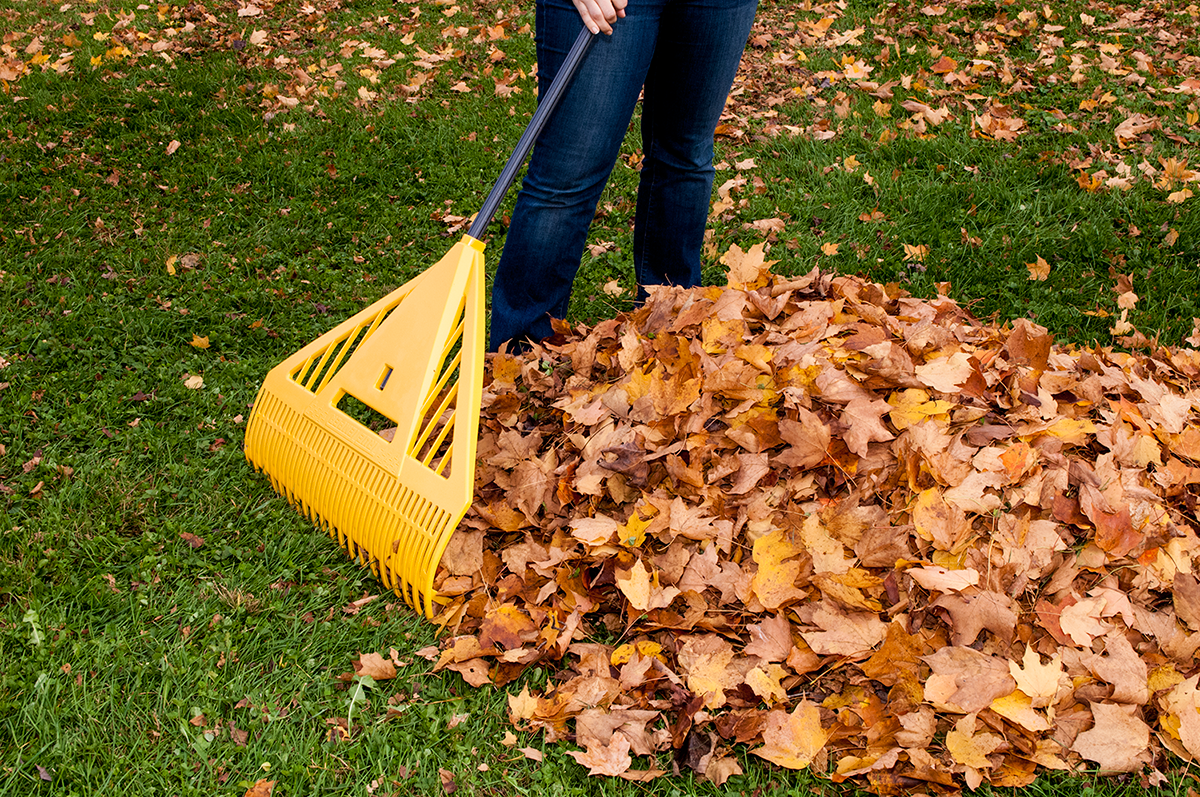 Rake leaves the right way true temper tools for Lawn and garden implements