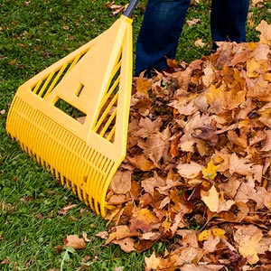 leaf-raking